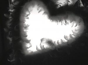 Kuvassa on höyhenpeitteessä oleva syämenmuotoinen aukko