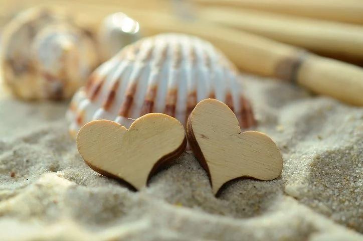 Kuvassa kaksi puista sydäntä hiekassa nojaamassa simpukkaan